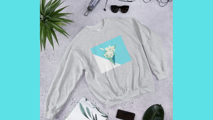 Spring sweatshirt in grey