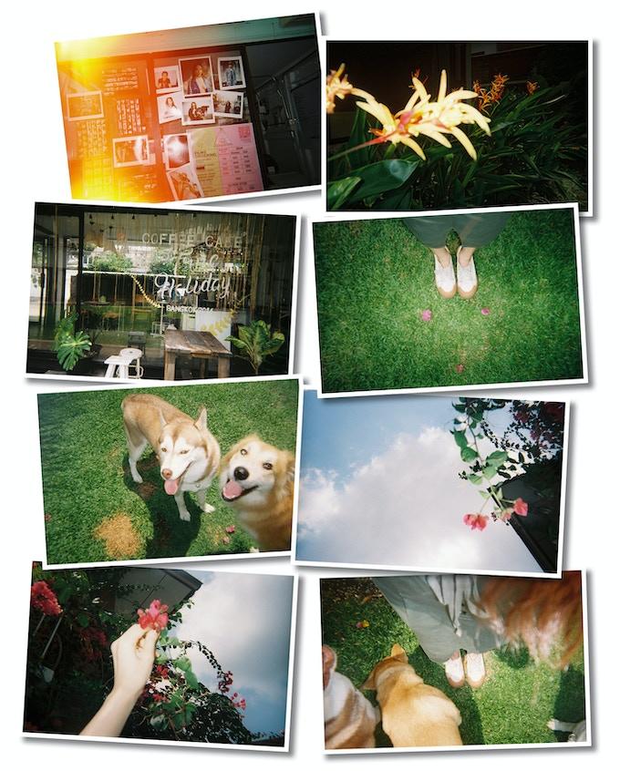 Photographer: Akina Mikam • Camera: MF-1 • FIlm: YASHICA 400 •Location: Bangkok