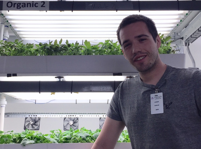 """Myself (Conor Quinlan) Working w/ """"Grafted Growers"""" as the System Engineer for an Indoor Recycling Hydroponic System Growing Grafted Crops ! One of my Two Internship Positions during my Graduate Studies at the U of A !"""