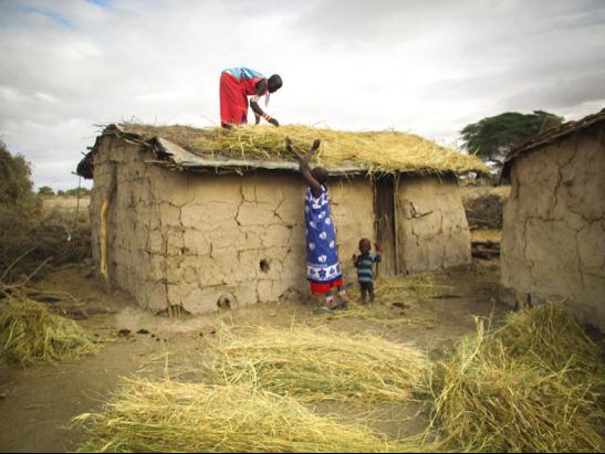 Women prepare the roof of a manyatta house. Joyce Nduguaya, Amboseli, Kenya