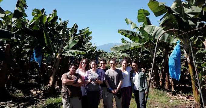 Team photo in the banana plantation