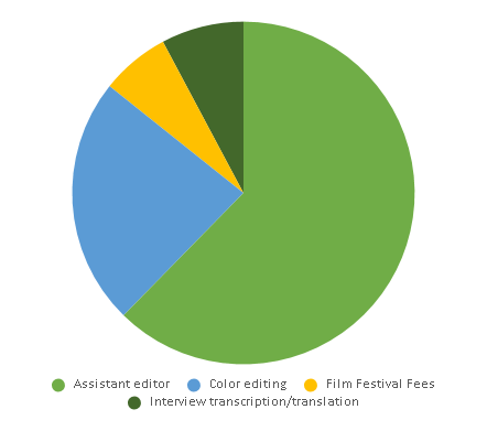 Piechart of our anticipated postproduction expenses