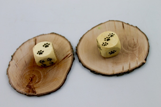 x2 Paw Print Dice & x2 Wooden Tree Trunk Slices