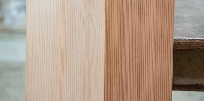 Left: fir tree / Right: cedar