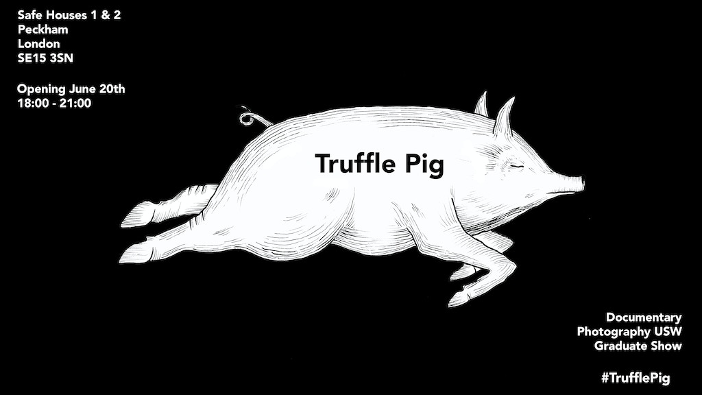 Truffle Pig - Documentary Photography Grad Show 2019 project video thumbnail