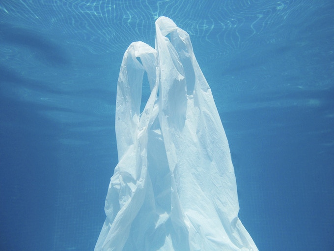 Single-use plastic bags are a problem for the environment.