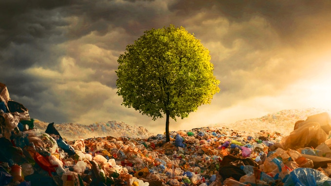 In a sea of garbage, we can change course. One Bag and One Tree at a time.
