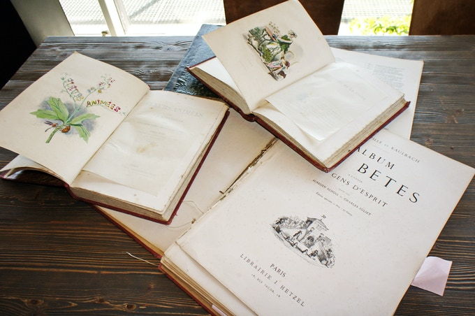 My original Grandville books from the 19th century, between 1840-1890