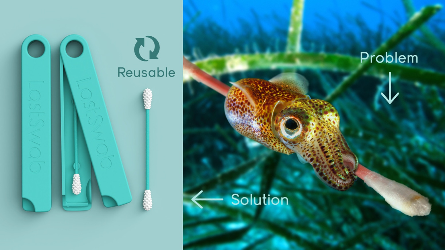 A sustainable alternative to the cotton swabs, cotton buds and others