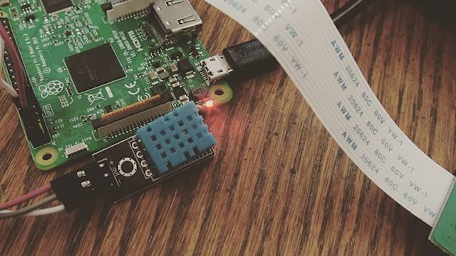 Raspberry Pi Cameras & Temperature Sensors: An IoT Guide by Robert