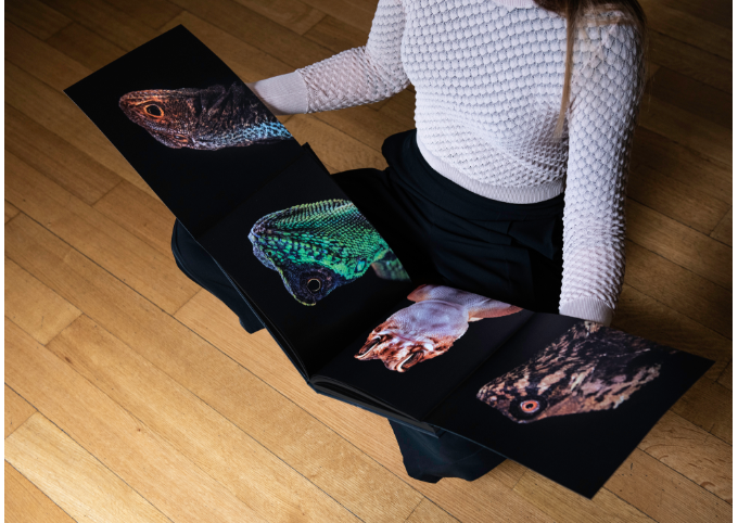 The COLD INSTINCT book has two foldout spreads: one featuring photographs of lizards and another one featuring four cobra portraits.