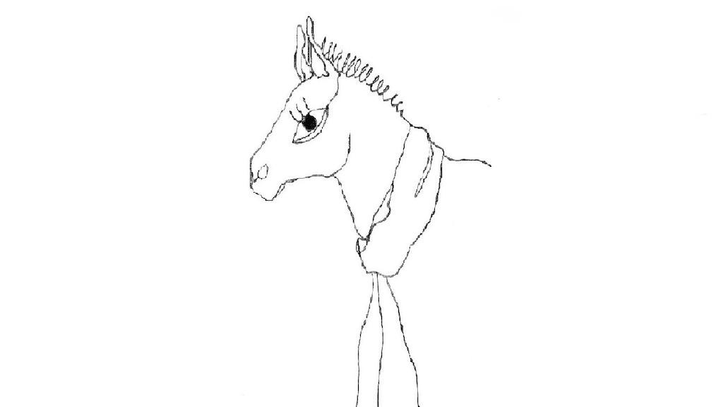Donkey - Short Film project video thumbnail