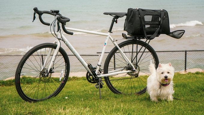 We know you have precious cargo! Whether it be your 4 legged companion or a 6 pack - CR8 keeps them safe.