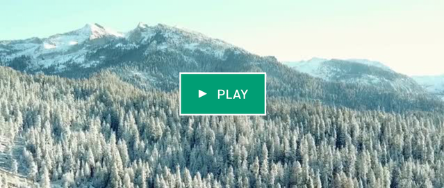 Click to watch the Tree Movie on Kickstarter Page!