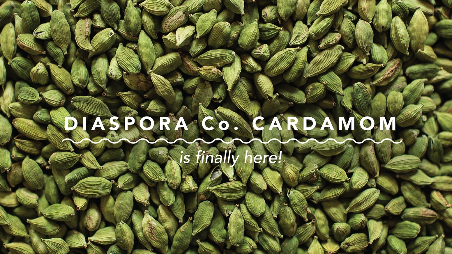 Potent, fruity, with a heady aroma— Diaspora Co. Cardamom is finally here!