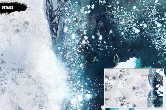 Détails : Glacier