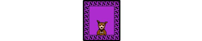 Bean: resident doggie