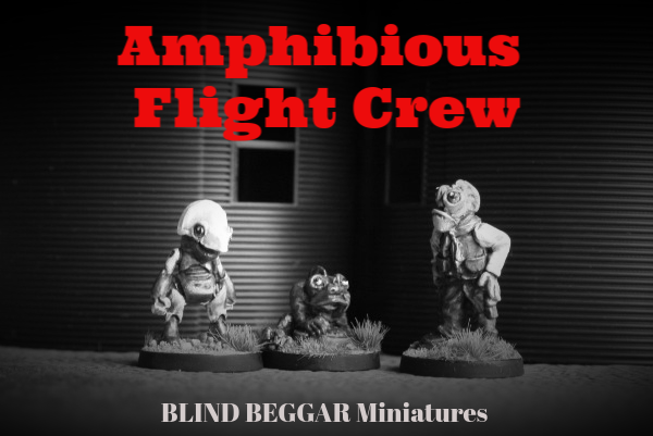 Amphibious Flight Crew