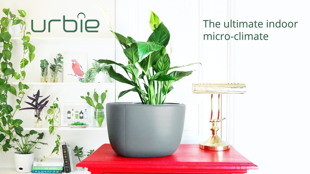 URBIE: Air Purifier that Lowers Humidity & Waters Your Plant