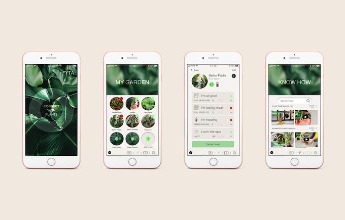fyta beam plant sensor app