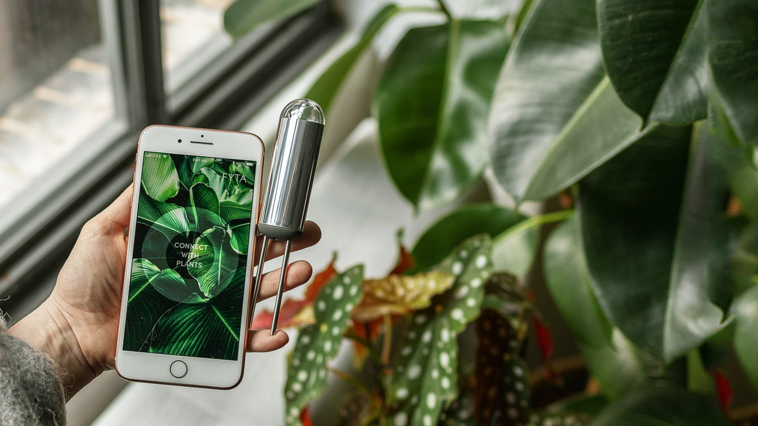 Do you have a black thumb? Then this is for you. The FYTA Beam brings plant care to the next level and gives your plant a voice.