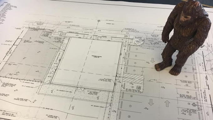 Bigfoot looks over the plans