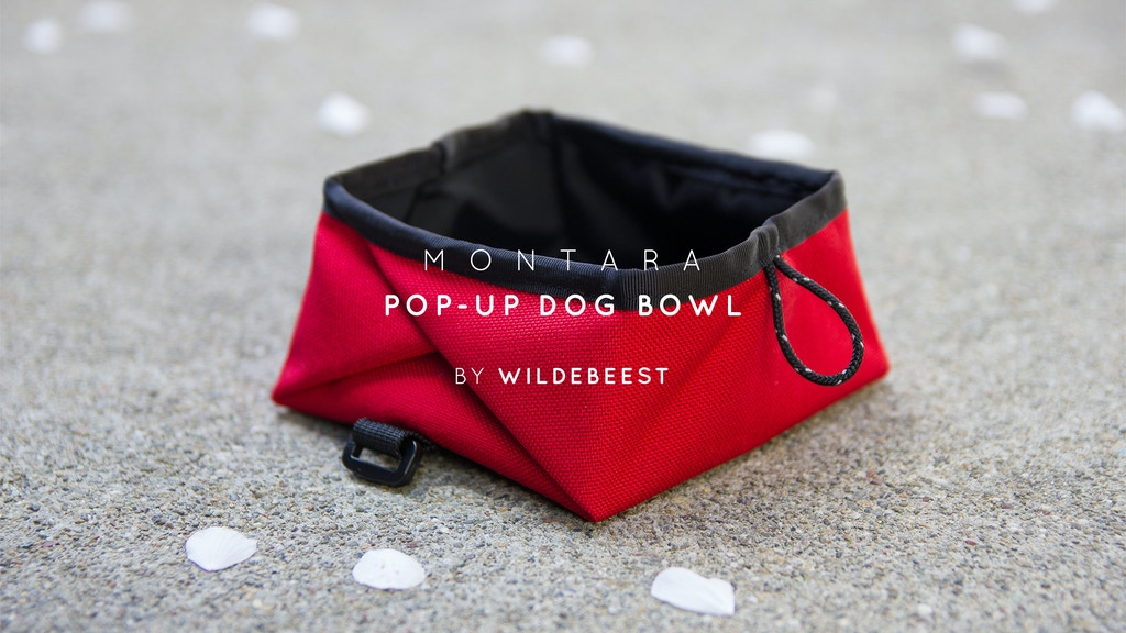 Montara Pop-Up Dog Bowl: Easy & Portable Pup Hydration project video thumbnail