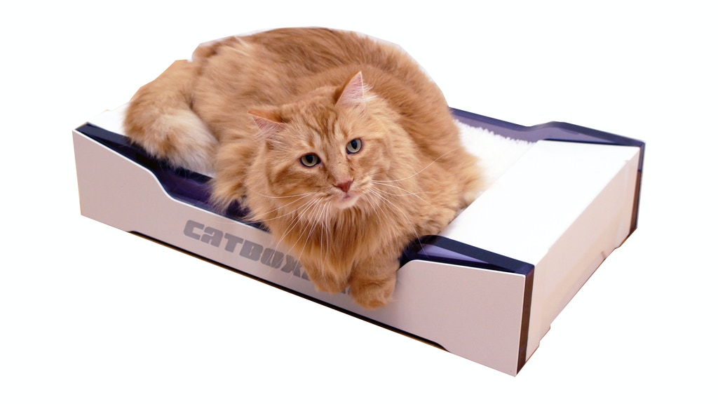 Catboxpro: Self-Flushing Automatic Cat Litter Box project video thumbnail
