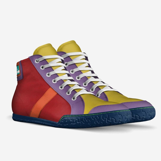 Potential new shoe design classic high top sneaker