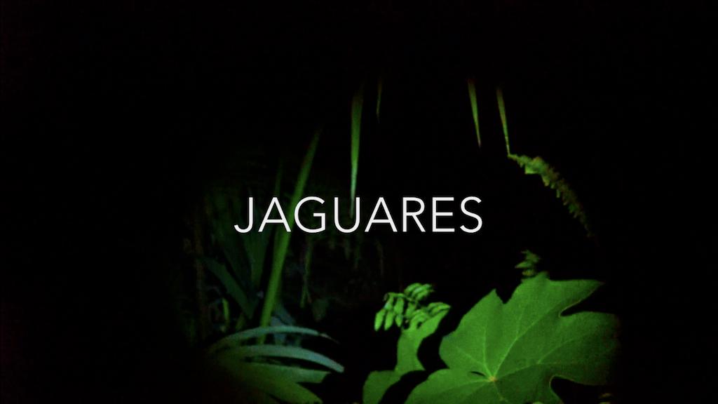 JAGUARES project video thumbnail