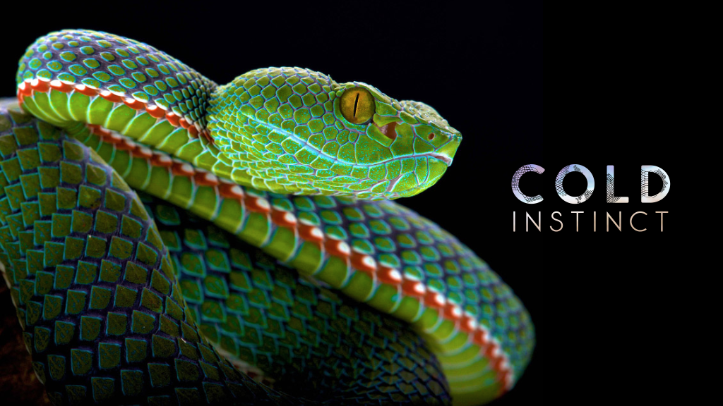 COLD INSTINCT: the Most Astonishing Reptiles and Amphibians project video thumbnail