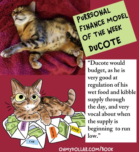 Here is Ducote, one of our previous purrsonal finance models.