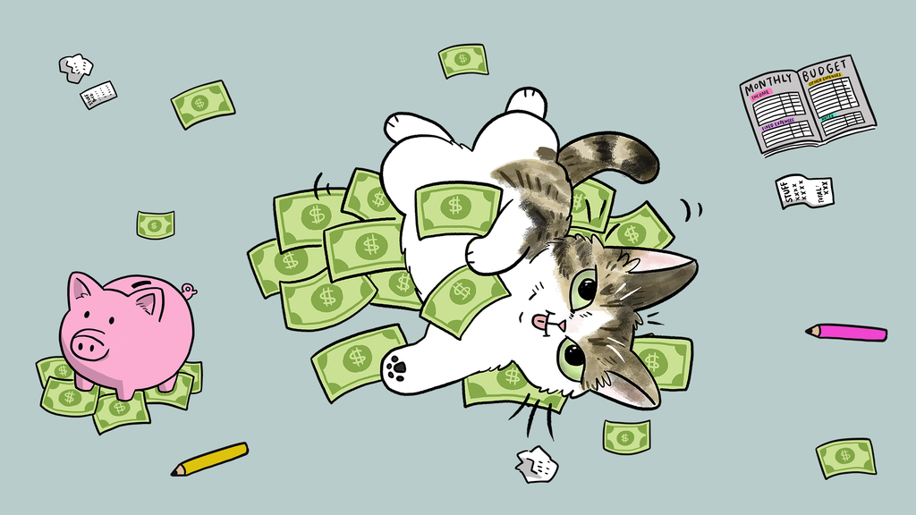 A Cat's Guide to Money - illustrated purrsonal finance book project video thumbnail