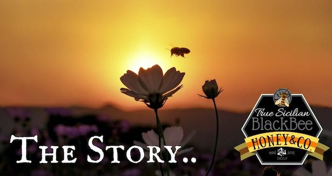 True Sicilian BlackBee Honey - Season 2019 by Dario