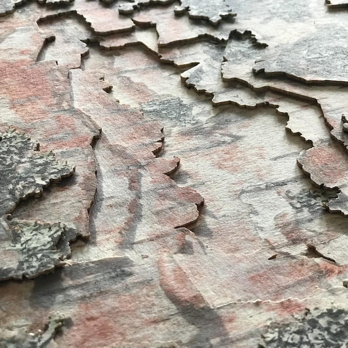 A detail of the prototype's birch bark print