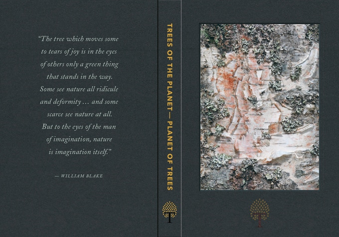Full cover of the big edition