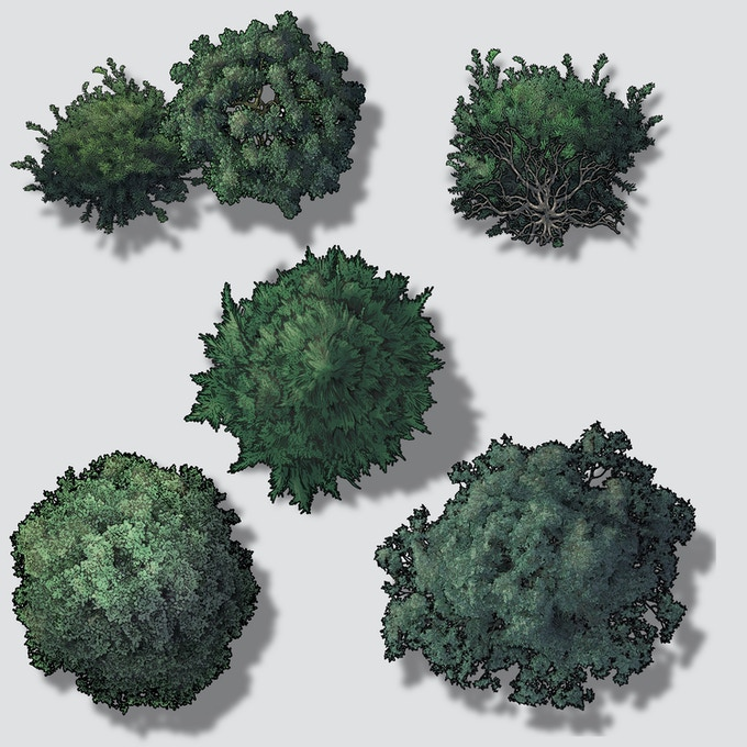 Individual Images - Base Trees with Shadows