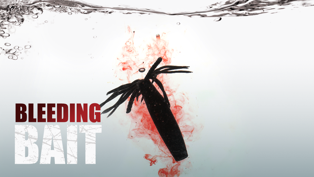 The world first Bleeding Bait that seduce Instinct of fish project video thumbnail