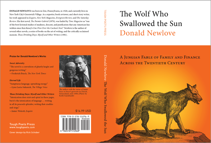 Cover design for the book.