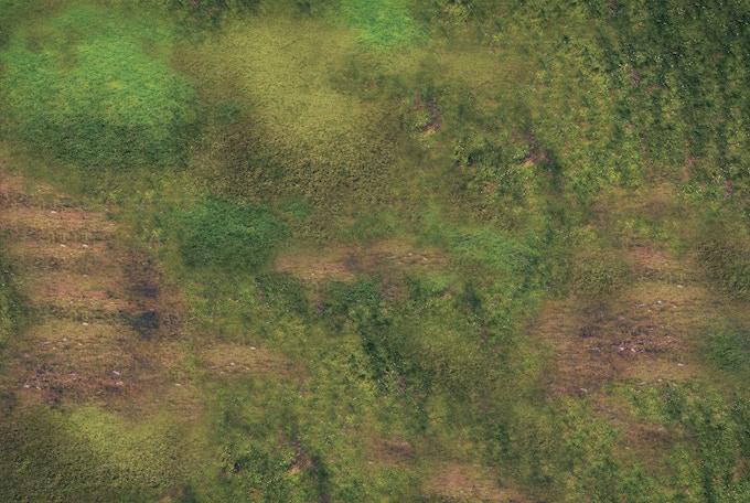 Battle Mat : Grass