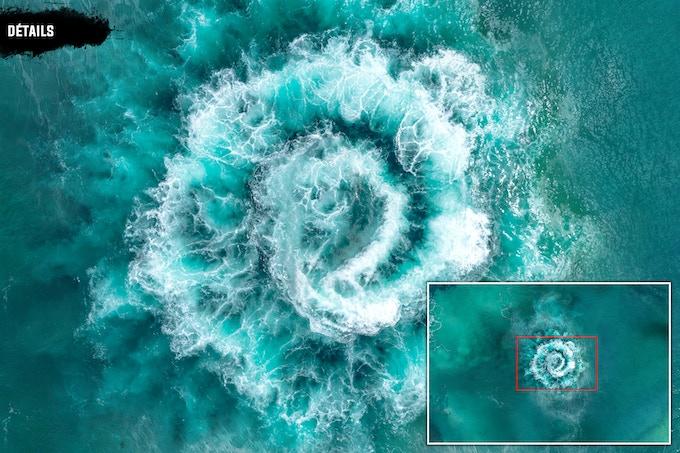 Détails : Ocean
