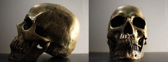 The Golden Skull of the SKeleton Man. Will you be the first to find it?