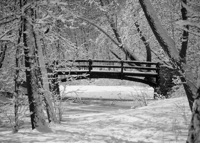 Winter at Salt Creek