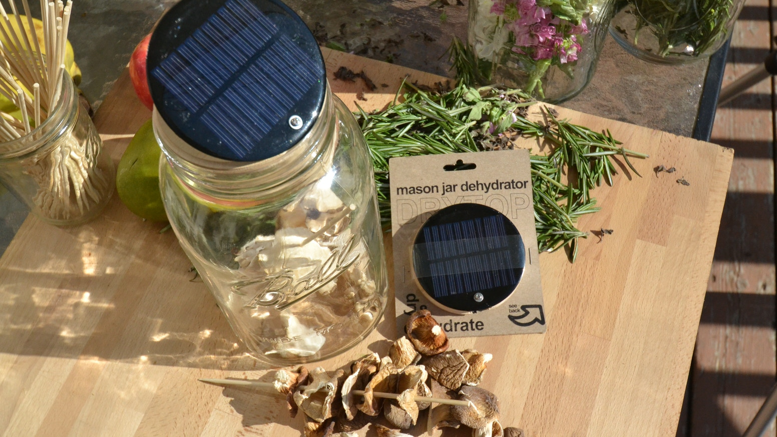 Dehydrate Herbs, Mushrooms, Fruits and Vegetables in the Sun