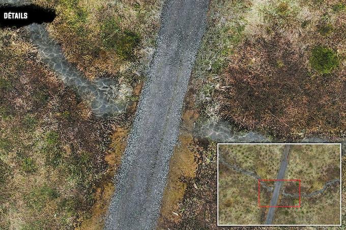 Détails : Swamp and Road