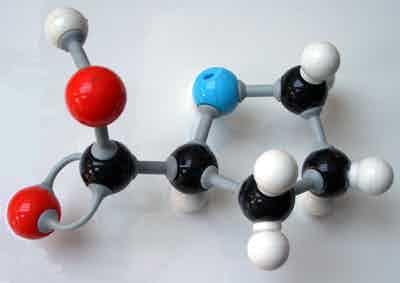 Molecule Model - Bonus points if you can guess the molecule.