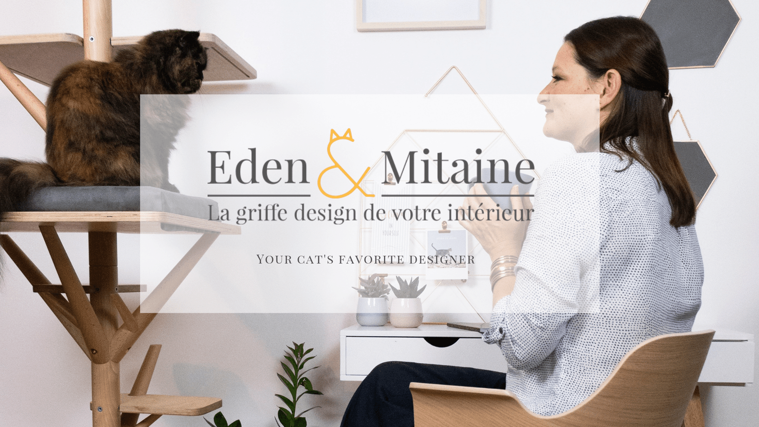 Designed furniture for home and cat well-being / Sublimez votre maison tout en améliorant le bien-être de votre chat.