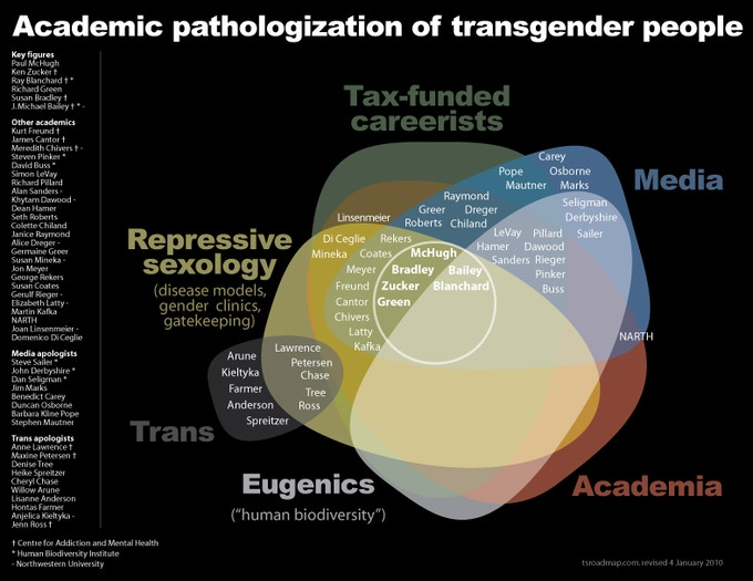 My interactive chart: academic pathologization of transgender people (2003)
