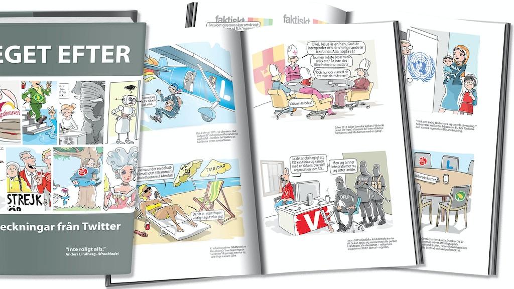 Steget Efter - Boken project video thumbnail