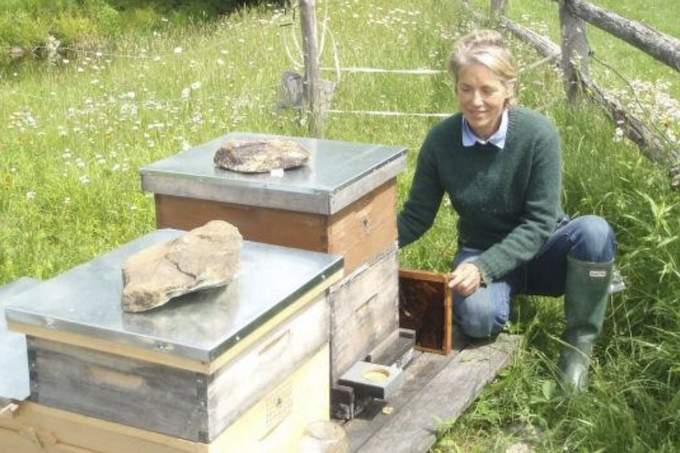 Leigh Merinoff tending the apiary at Meadows Bee Farm, Windham, VT